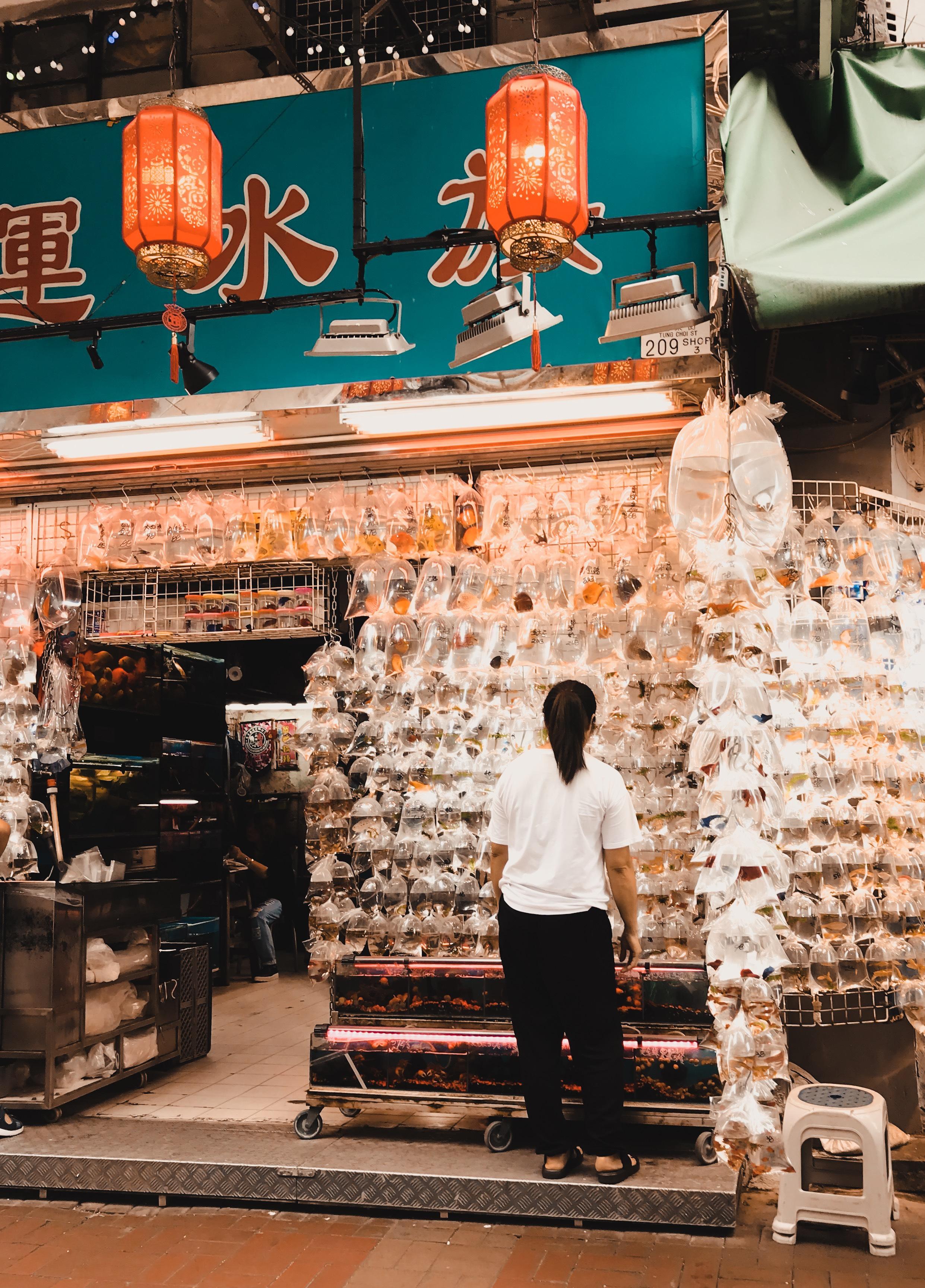 Goldfish Market, Prince Edward Hong Kong